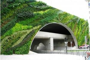 Going vertical - la historia de paredes verdes